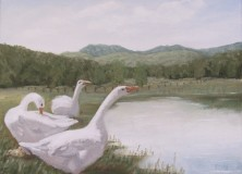 Demonstration-Goose Morning Ritual in Genesis Artist heat-set Oils -SOLD