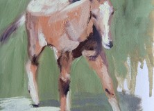 SOLD Painting WIP of a Foal