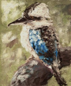Mr Kookaburra Sir