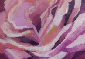 'Pink Bloom' The Rose! (sold)