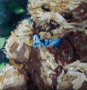 Sunlit Teddy Bear