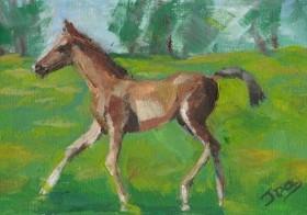 'Foal Play'